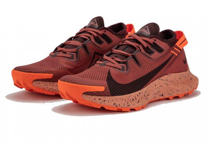 Nike Pegasus Trail 2 Full Review